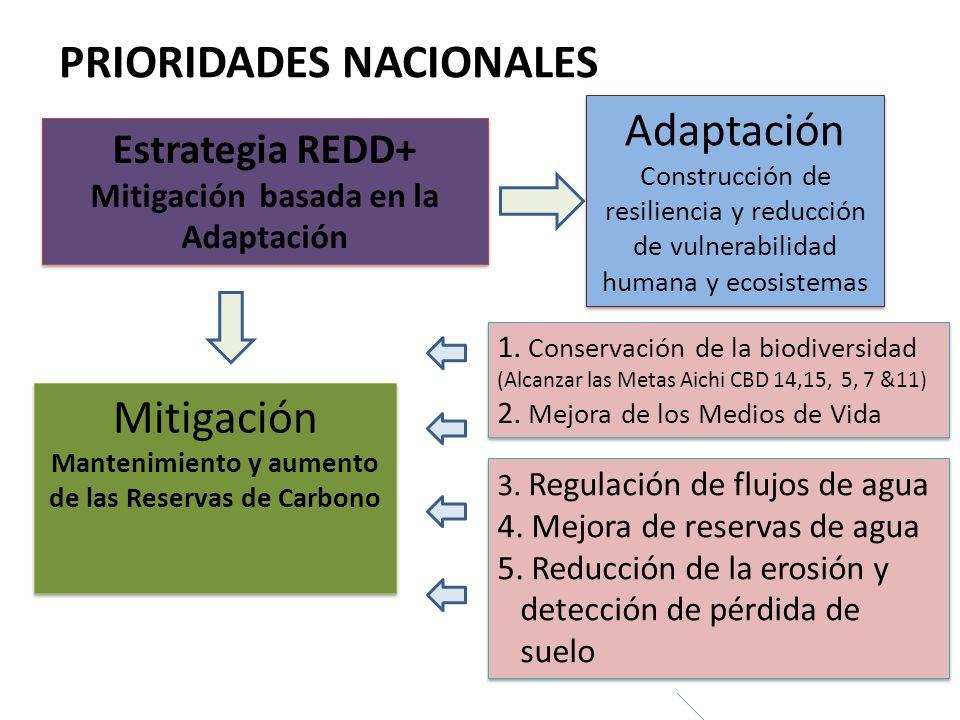Estrategia REDD+ Mitigación basada en la Adaptación Estrategia REDD+ Mitigación basada en la Adaptación Adaptación Construcción de resiliencia y reduc