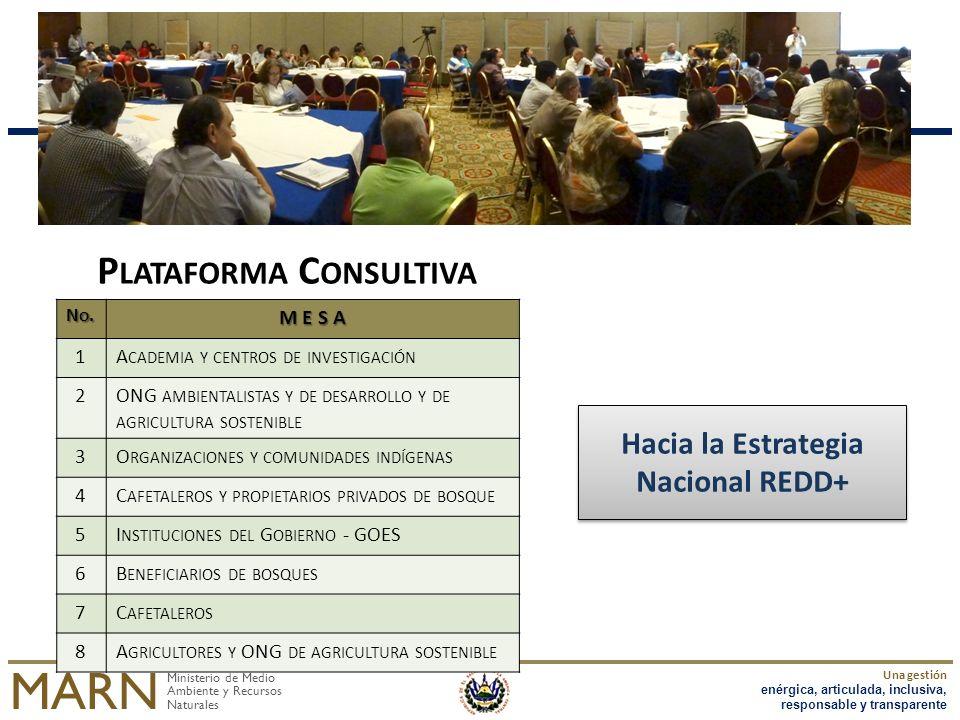 Ministerio de Medio Ambiente y Recursos Naturales MARN Una gestión enérgica, articulada, inclusiva, responsable y transparente NO.NO.NO.NO. M E S A 1A