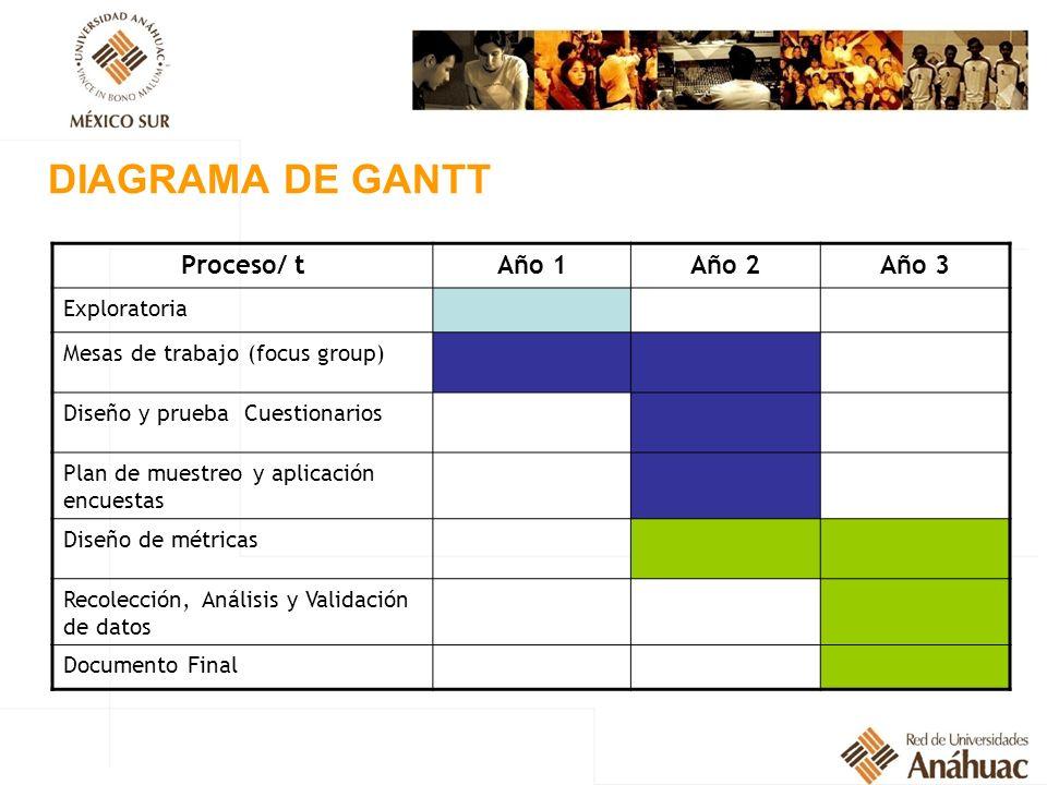 DIAGRAMA DE GANTT Proceso/ tAño 1Año 2Año 3 Exploratoria Mesas de trabajo (focus group) Diseño y prueba Cuestionarios Plan de muestreo y aplicación en