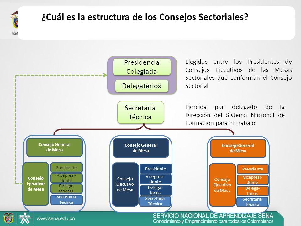 Tecnologías de la Información y las Comunicaciones (3) Transporte y Logística (6) Administrativo, Comercial y Financiero (10) Servicios Ambientales (2) Agropecuario y Agroindustrial (17) Turismo y Alimentos (3) Minero energético (4) Industrial (11) Sistema Moda (3) Construcción y Mobiliario (7) Industrias Culturales, Creativas y Medios (4) Servicios Sociales (5) Consejos Sectoriales de Mesa