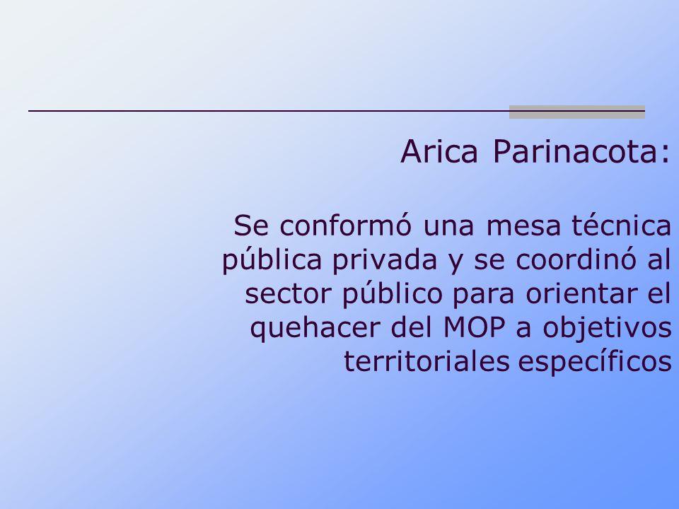 Arica Parinacota: Se conformó una mesa técnica pública privada y se coordinó al sector público para orientar el quehacer del MOP a objetivos territori