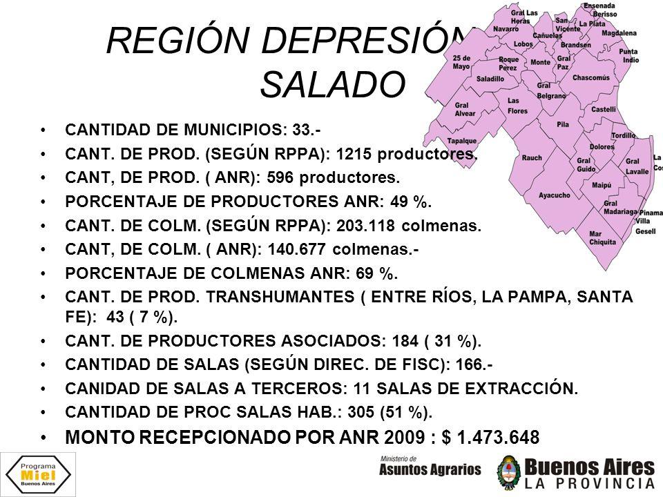 REGIÓN DEPRESIÓN DEL SALADO CANTIDAD DE MUNICIPIOS: 33.- CANT. DE PROD. (SEGÚN RPPA): 1215 productores. CANT, DE PROD. ( ANR): 596 productores. PORCEN