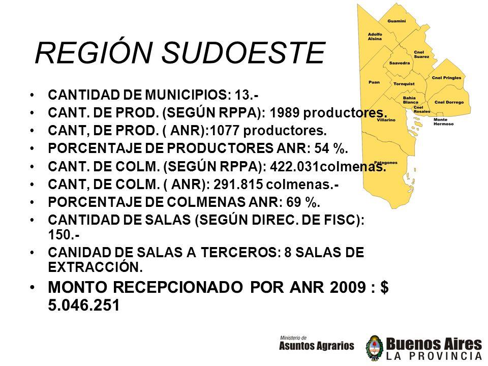 REGIÓN SUDOESTE CANTIDAD DE MUNICIPIOS: 13.- CANT. DE PROD. (SEGÚN RPPA): 1989 productores. CANT, DE PROD. ( ANR):1077 productores. PORCENTAJE DE PROD