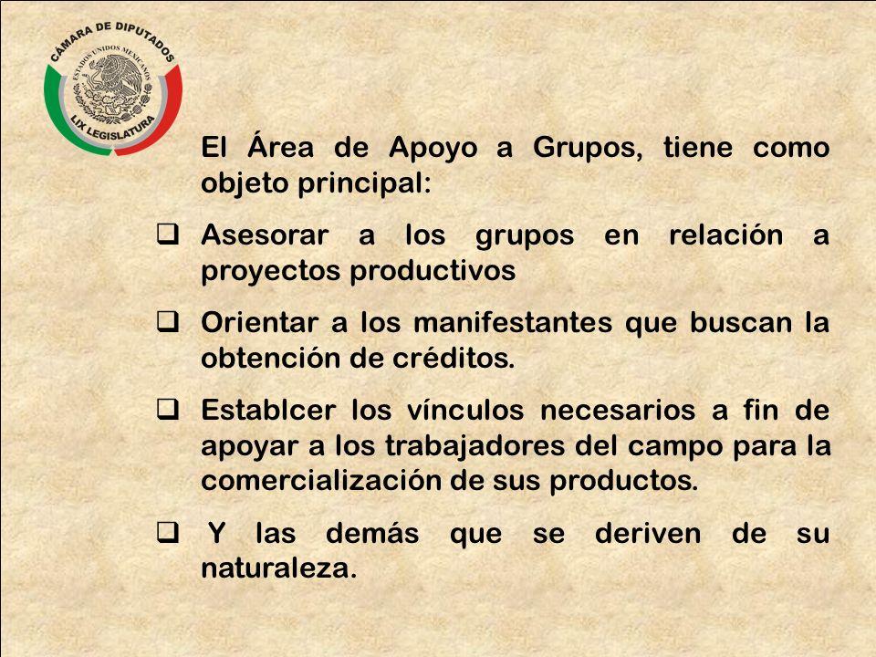 El Área de Apoyo a Grupos, tiene como objeto principal: Asesorar a los grupos en relación a proyectos productivos Orientar a los manifestantes que bus