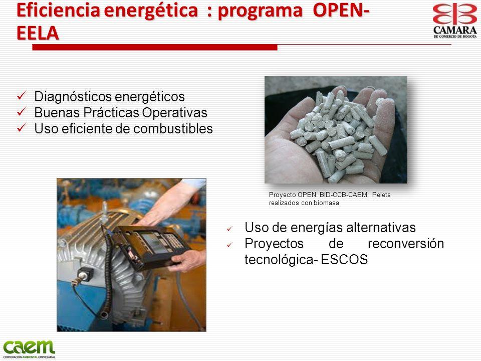 Eficiencia energética : programa OPEN- EELA Uso de energías alternativas Proyectos de reconversión tecnológica- ESCOS Diagnósticos energéticos Buenas