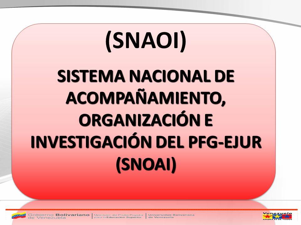 SISTEMA NACIONAL DE ACOMPAÑAMIENTO, ORGANIZACIÓN E INVESTIGACIÓN DEL PFG-EJUR (SNOAI) (SNAOI)