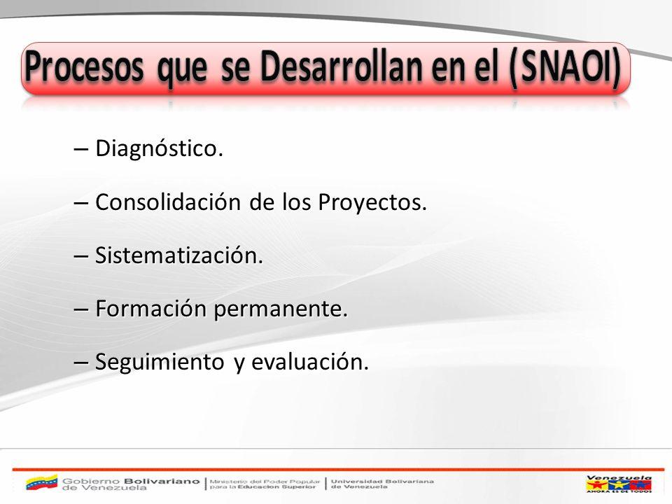 – Diagnóstico. – Consolidación de los Proyectos. – Sistematización. – Formación permanente. – Seguimiento y evaluación.