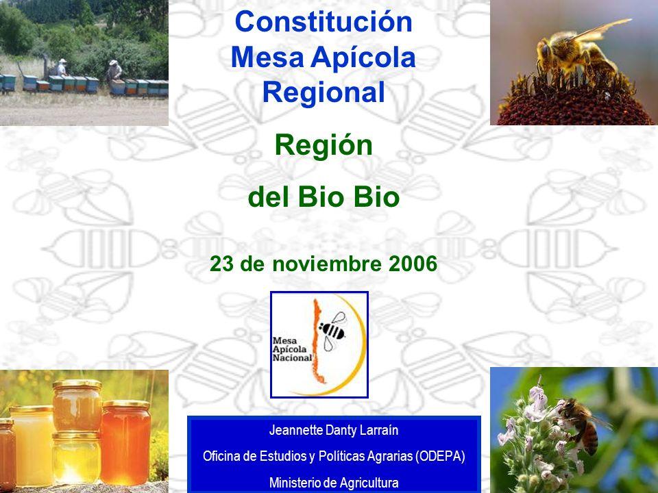 Constitución Mesa Apícola Regional Región del Bio Bio 23 de noviembre 2006 Jeannette Danty Larraín Oficina de Estudios y Políticas Agrarias (ODEPA) Mi