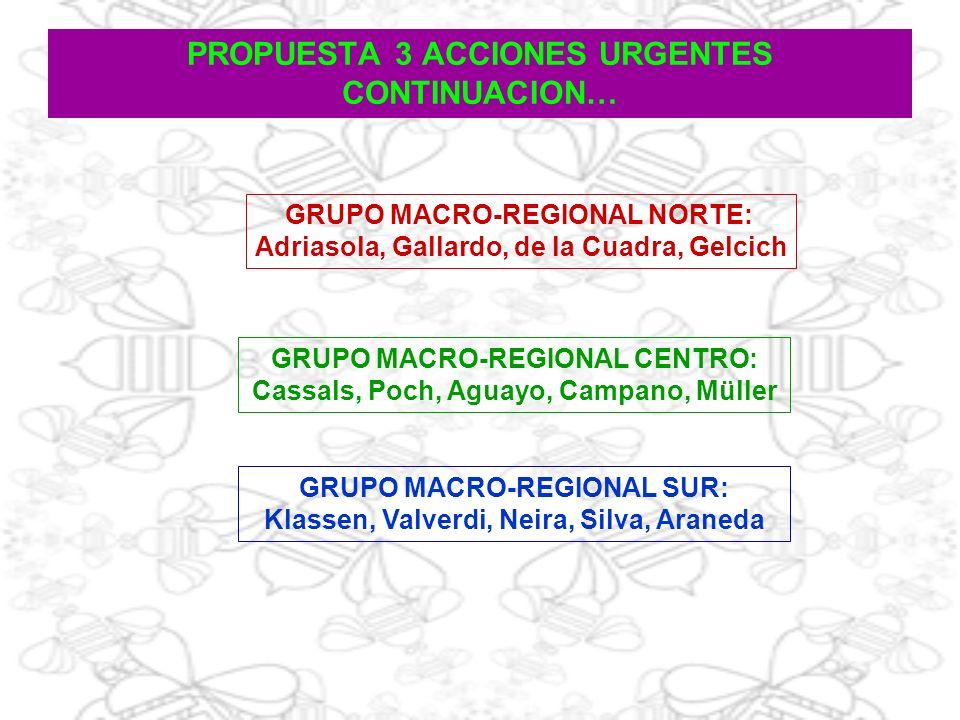 PROPUESTA 3 ACCIONES URGENTES CONTINUACION… GRUPO MACRO-REGIONAL SUR: Klassen, Valverdi, Neira, Silva, Araneda GRUPO MACRO-REGIONAL CENTRO: Cassals, P
