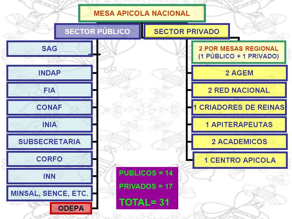 MESA APICOLA NACIONAL SECTOR PÚBLICO SAG INDAP FIA CONAF INIA SUBSECRETARIA CORFO INN MINSAL, SENCE, ETC. ODEPA SECTOR PRIVADO 2 POR MESAS REGIONAL (1