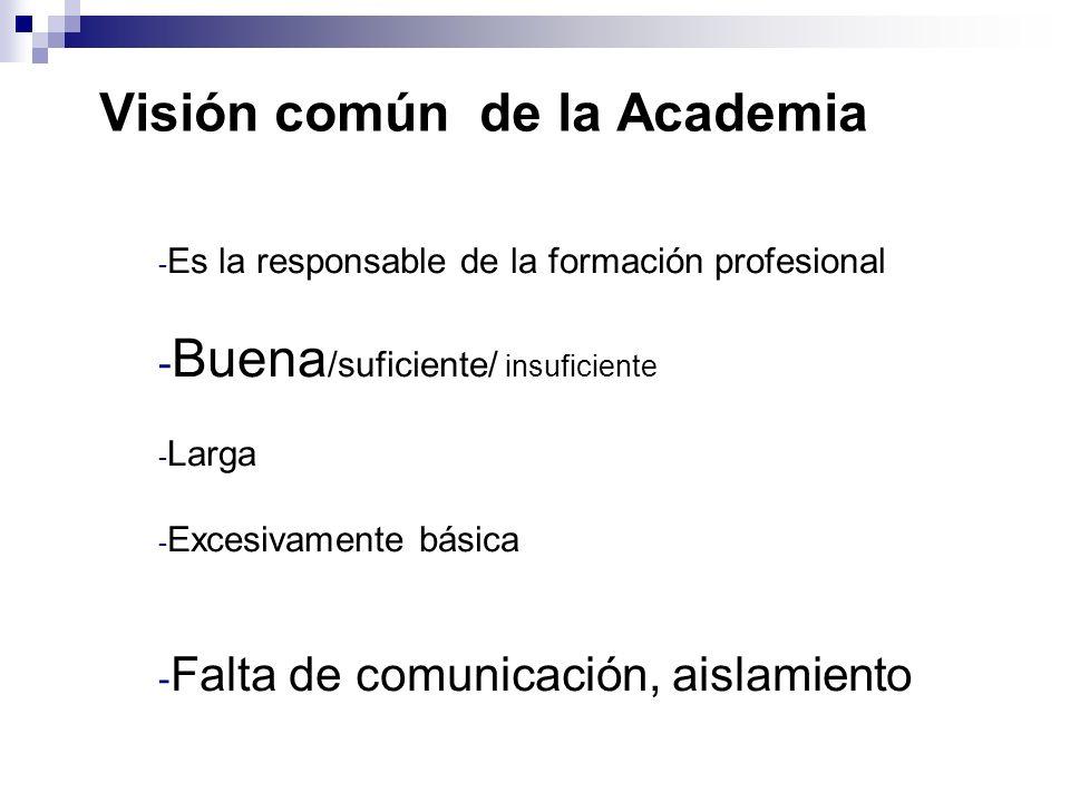Visión común de la Academia - Es la responsable de la formación profesional - Buena /suficiente/ insuficiente - Larga - Excesivamente básica - Falta de comunicación, aislamiento