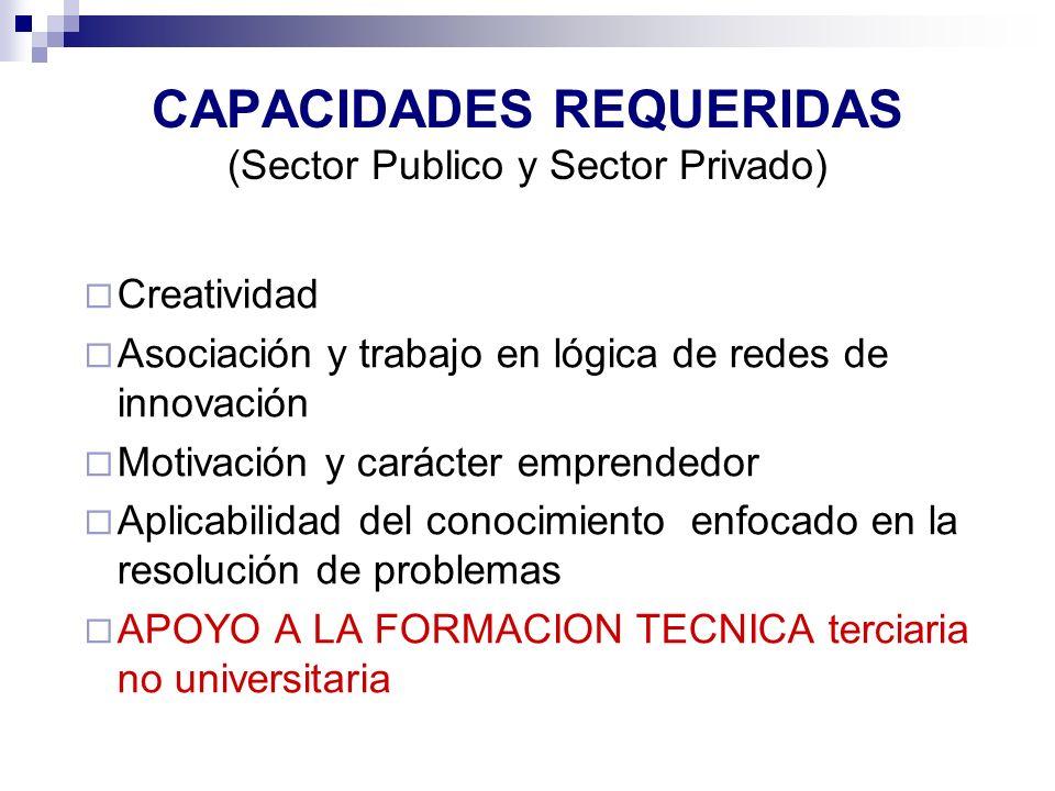 CAPACIDADES REQUERIDAS (Sector Publico y Sector Privado) Creatividad Asociación y trabajo en lógica de redes de innovación Motivación y carácter empre