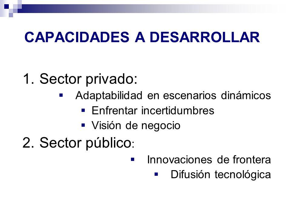 CAPACIDADES A DESARROLLAR 1.Sector privado: Adaptabilidad en escenarios dinámicos Enfrentar incertidumbres Visión de negocio 2.Sector público : Innova