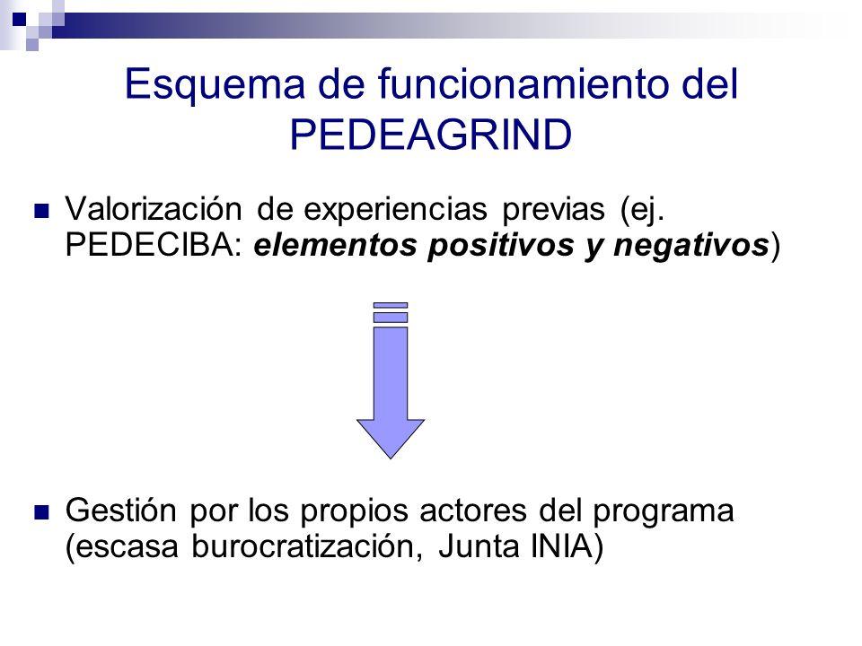 Esquema de funcionamiento del PEDEAGRIND Valorización de experiencias previas (ej. PEDECIBA: elementos positivos y negativos) Gestión por los propios