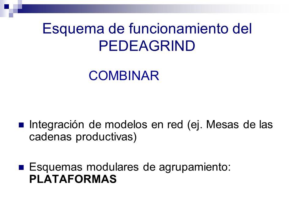 Esquema de funcionamiento del PEDEAGRIND Integración de modelos en red (ej. Mesas de las cadenas productivas) Esquemas modulares de agrupamiento: PLAT