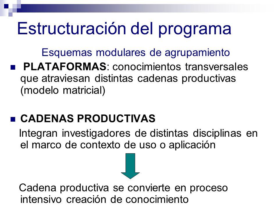 Estructuración del programa Esquemas modulares de agrupamiento PLATAFORMAS: conocimientos transversales que atraviesan distintas cadenas productivas (modelo matricial) CADENAS PRODUCTIVAS Integran investigadores de distintas disciplinas en el marco de contexto de uso o aplicación Cadena productiva se convierte en proceso intensivo creación de conocimiento