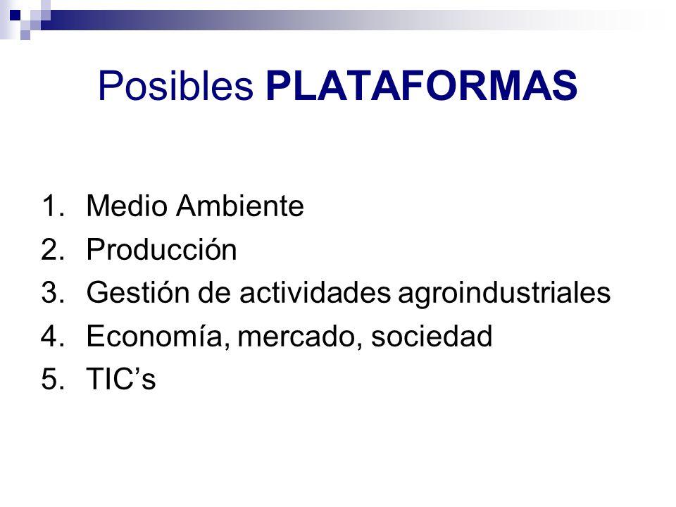 Posibles PLATAFORMAS 1.Medio Ambiente 2.Producción 3.Gestión de actividades agroindustriales 4.Economía, mercado, sociedad 5.TICs