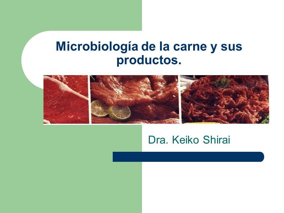 Microbiología de la carne y sus productos. Dra. Keiko Shirai