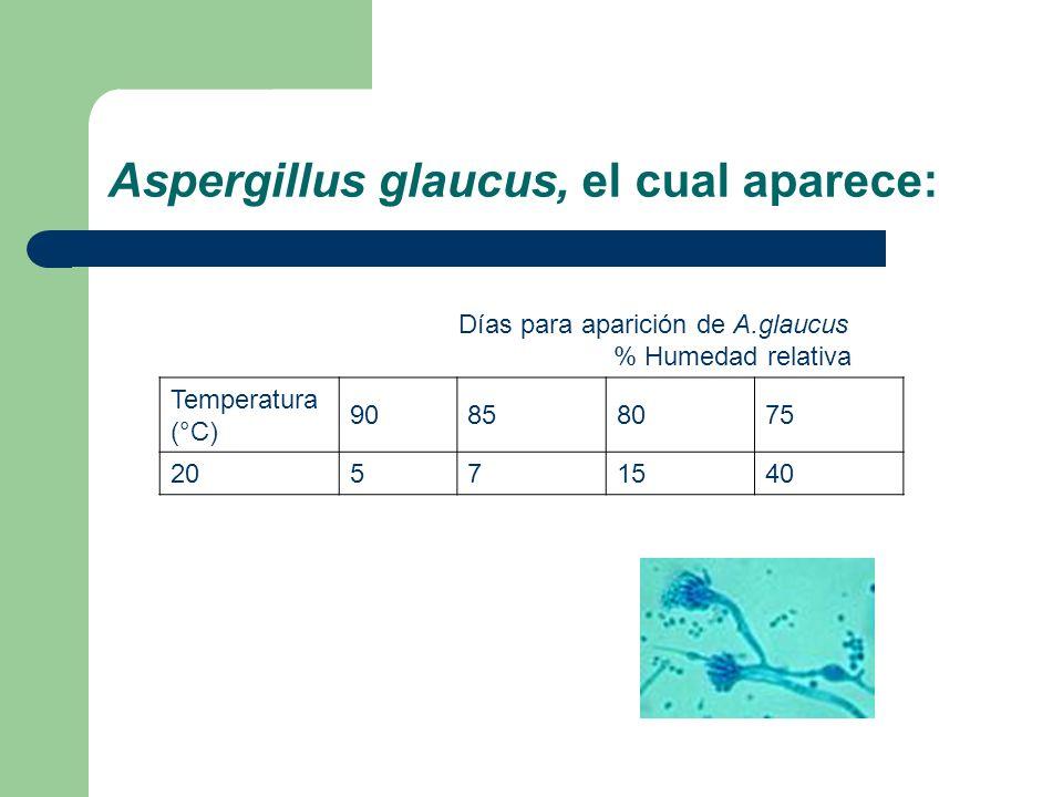 Aspergillus glaucus, el cual aparece: Días para aparición de A.glaucus % Humedad relativa Temperatura (°C) 90858075 20571540