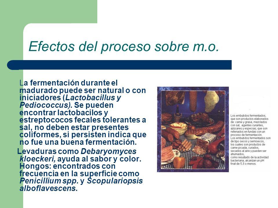 Efectos del proceso sobre m.o. La fermentación durante el madurado puede ser natural o con iniciadores (Lactobacillus y Pediococcus). Se pueden encont