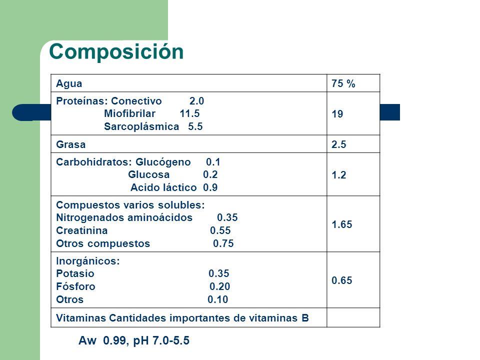 Composición Composición después del rigor mortis Agua75 % Proteínas: Conectivo 2.0 Miofibrilar 11.5 Sarcoplásmica 5.5 19 Grasa 2.5 Carbohidratos: Gluc