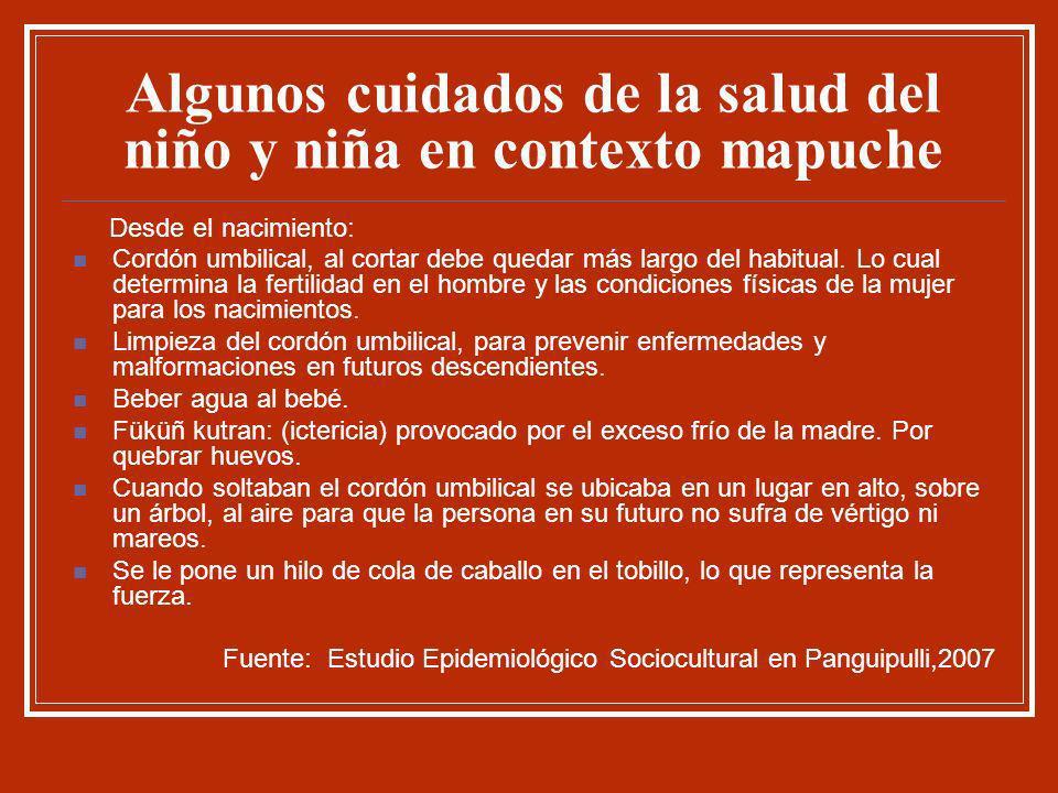 Algunos cuidados de la salud del niño y niña en contexto mapuche Desde el nacimiento: Cordón umbilical, al cortar debe quedar más largo del habitual.