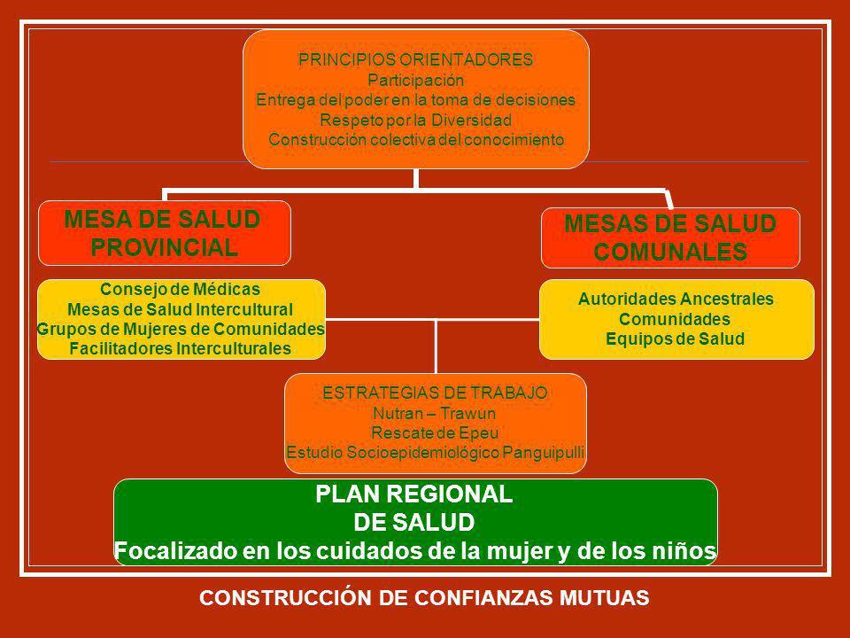 Autoridades Ancestrales Comunidades Equipos de Salud Consejo de Médicas Mesas de Salud Intercultural Grupos de Mujeres de Comunidades Facilitadores In