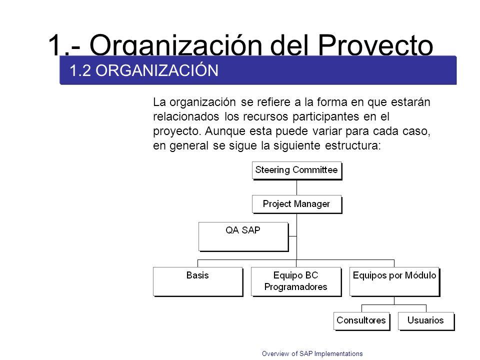 Overview of SAP Implementations La organización se refiere a la forma en que estarán relacionados los recursos participantes en el proyecto. Aunque es