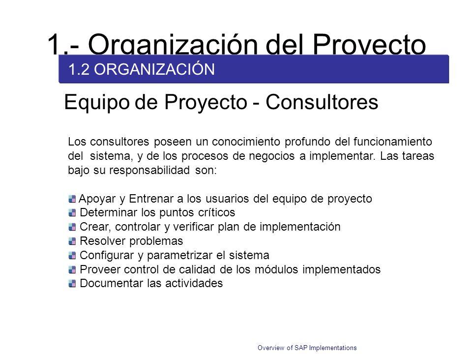 Overview of SAP Implementations Equipo de Proyecto - Consultores Los consultores poseen un conocimiento profundo del funcionamiento del sistema, y de