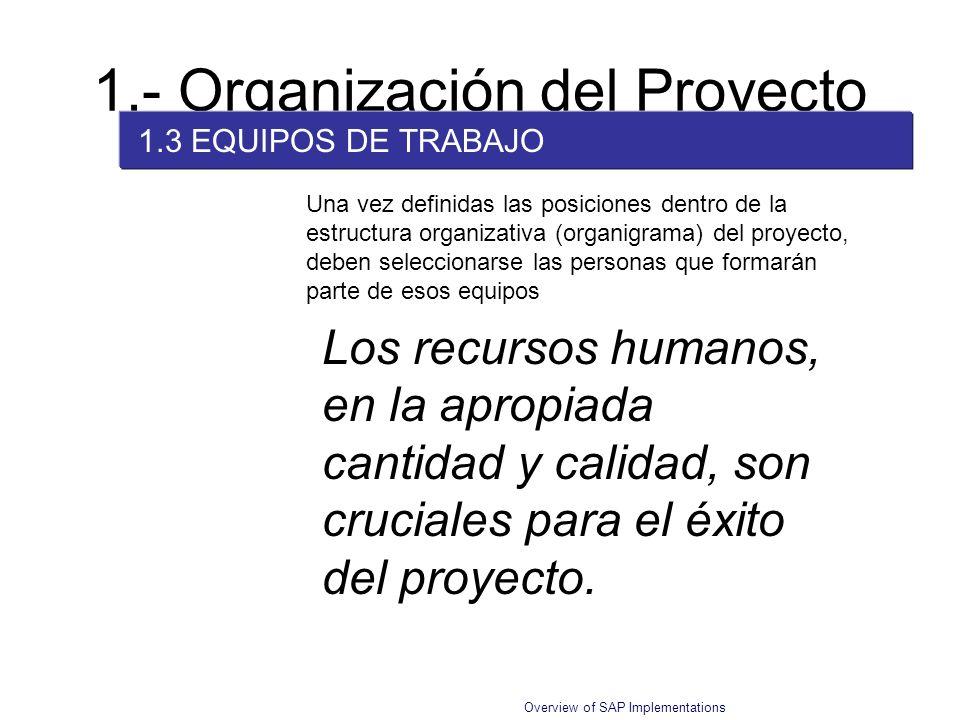 Overview of SAP Implementations 1.- Organización del Proyecto 1.3 EQUIPOS DE TRABAJO Una vez definidas las posiciones dentro de la estructura organiza