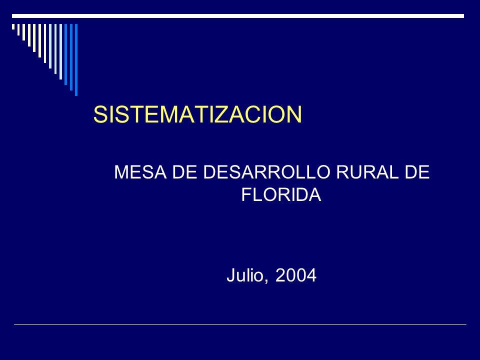 SISTEMATIZACION MESA DE DESARROLLO RURAL DE FLORIDA Julio, 2004