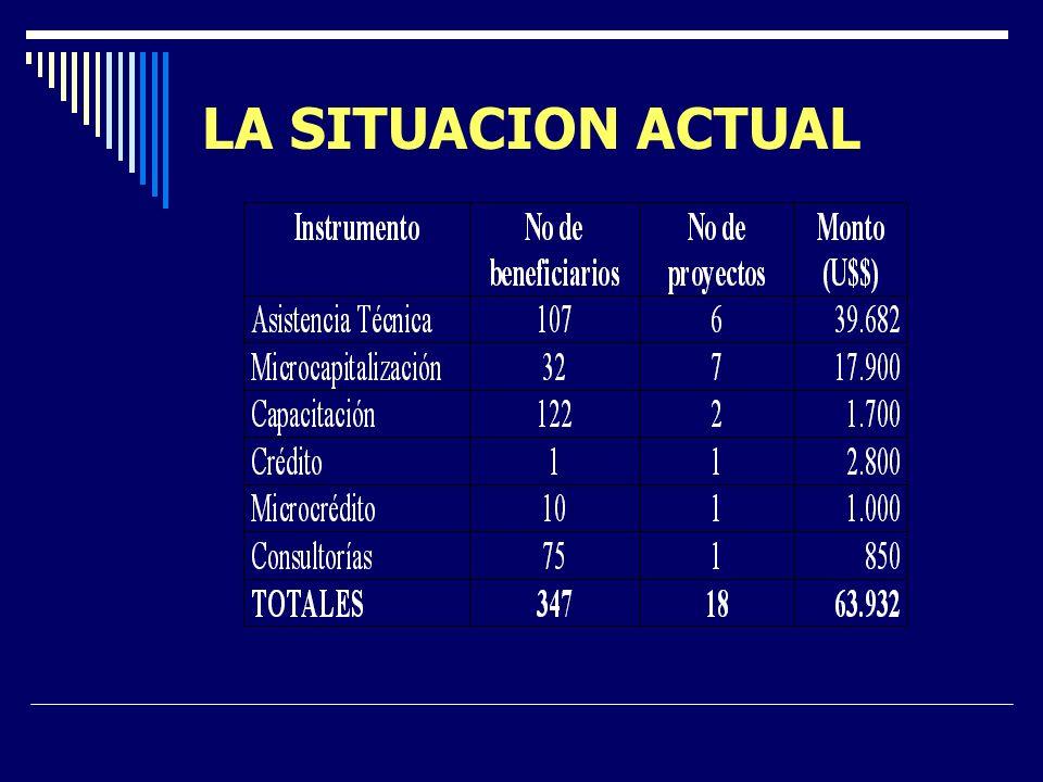LA SITUACION ACTUAL Sector lechero: aporte a consolidación de cobertura. Sectores menos organizados: satisfacción parcial de demanda (apicultores, hor