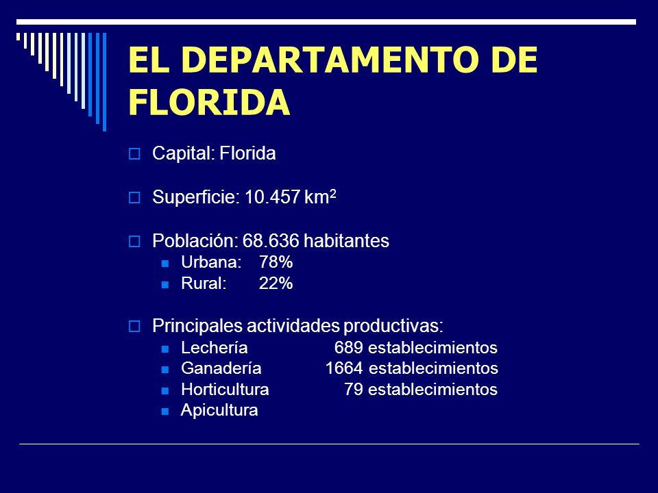 EL DEPARTAMENTO DE FLORIDA Capital: Florida Superficie: 10.457 km 2 Población: 68.636 habitantes Urbana:78% Rural:22% Principales actividades productivas: Lechería 689 establecimientos Ganadería 1664 establecimientos Horticultura 79 establecimientos Apicultura