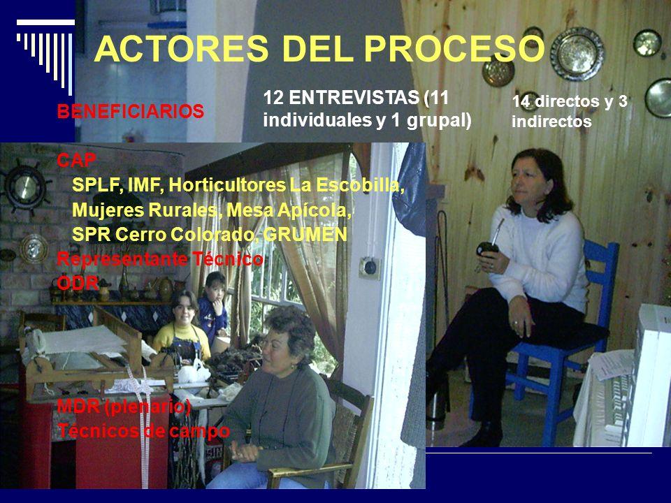 BENEFICIARIOS CAP SPLF, IMF, Horticultores La Escobilla, Mujeres Rurales, Mesa Apícola, SPR Cerro Colorado, GRUMEN Representante Técnico ODR MDR (plenario) Técnicos de campo ACTORES DEL PROCESO 12 ENTREVISTAS (11 individuales y 1 grupal) 14 directos y 3 indirectos