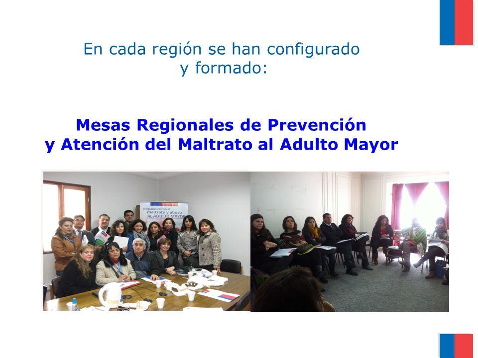 En cada región se han configurado y formado: Mesas Regionales de Prevención y Atención del Maltrato al Adulto Mayor
