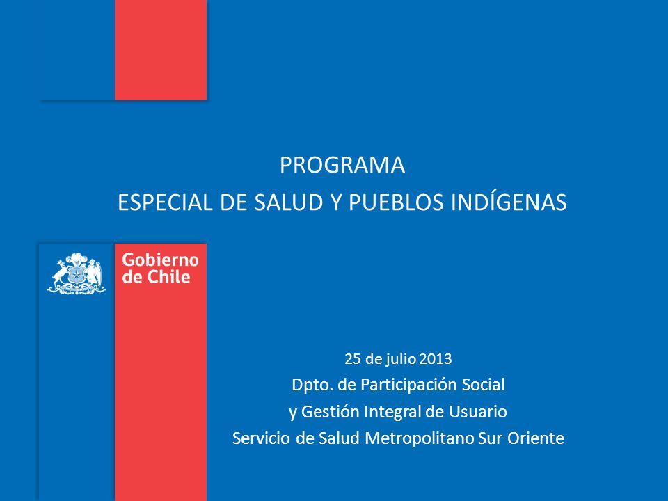 Programa Especial de Salud y Pueblos Indígenas Servicio de Salud M. Sur Oriente 2013