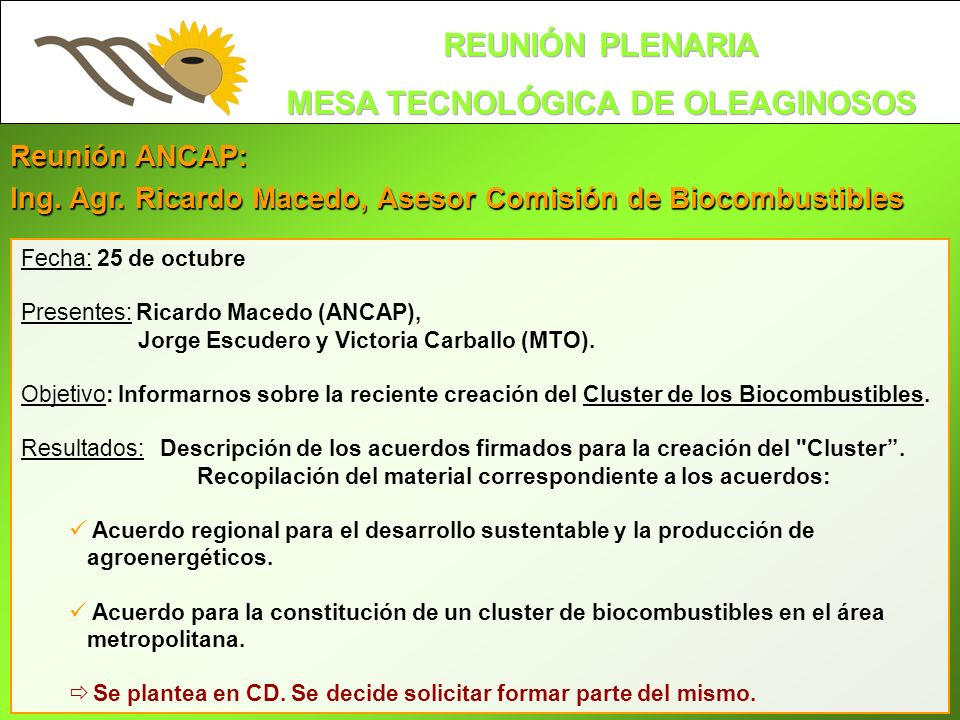 Reunión ANCAP: Ing. Agr. Ricardo Macedo, Asesor Comisión de Biocombustibles Fecha: 25 de octubre Presentes: Ricardo Macedo (ANCAP), Jorge Escudero y V