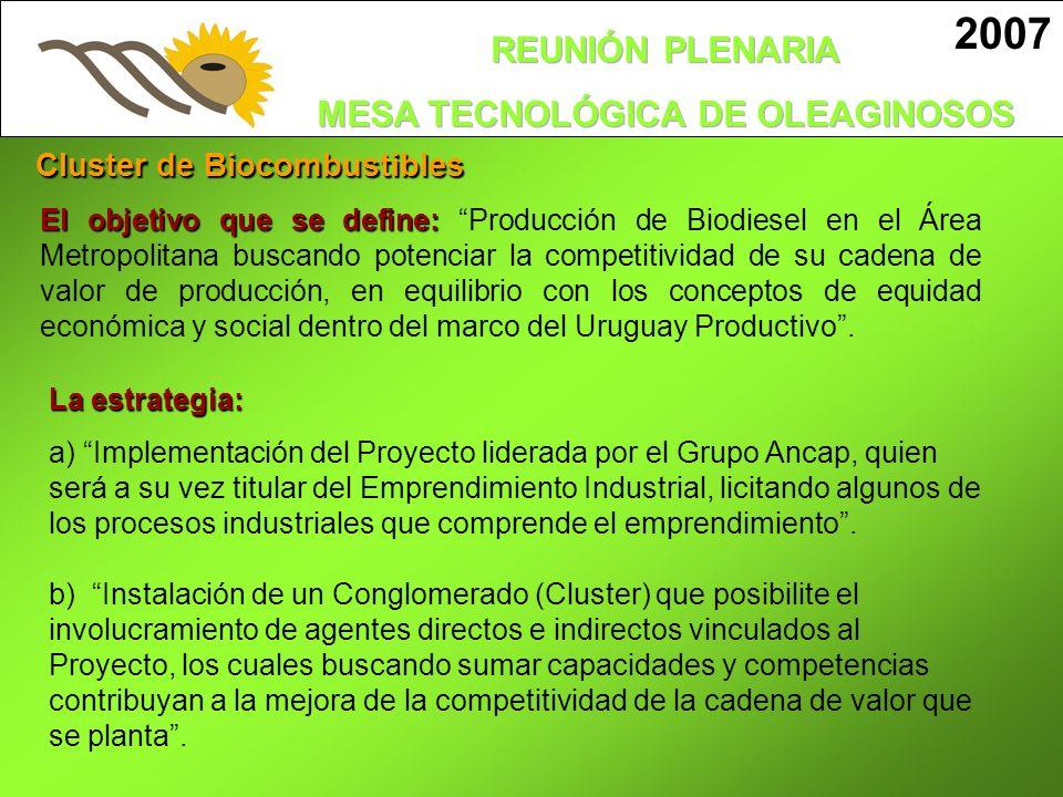 2007 El objetivo que se define: El objetivo que se define: Producción de Biodiesel en el Área Metropolitana buscando potenciar la competitividad de su