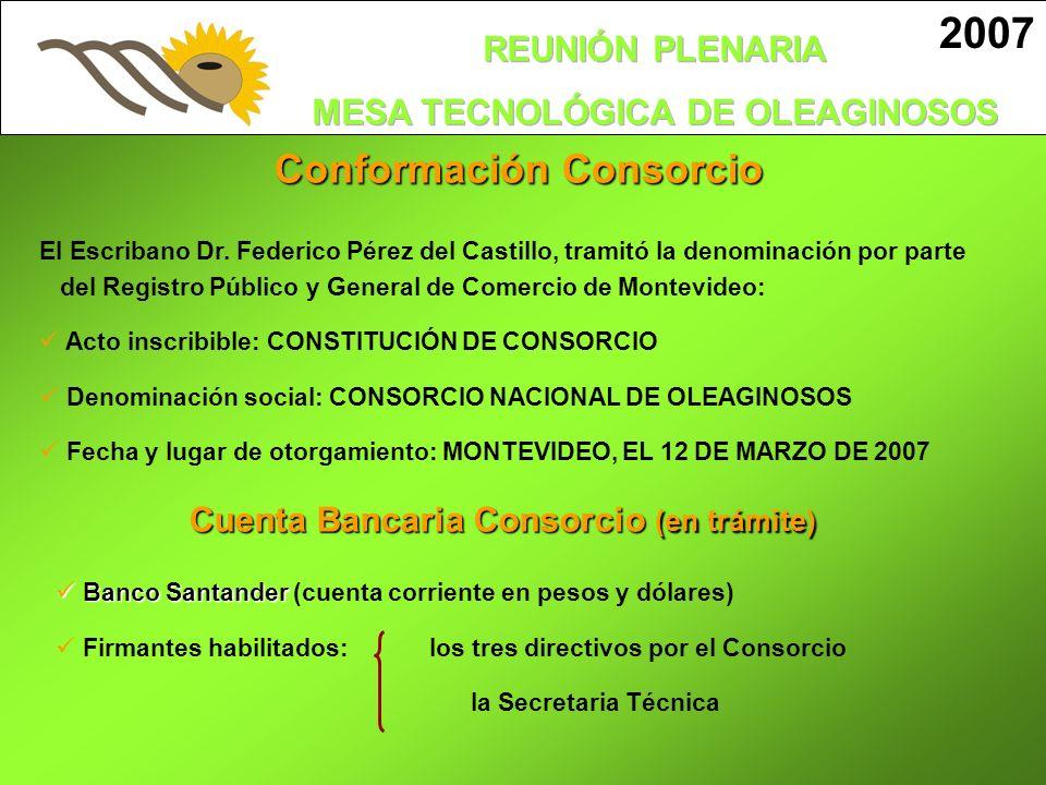 Conformación Consorcio 2007 El Escribano Dr. Federico Pérez del Castillo, tramitó la denominación por parte del Registro Público y General de Comercio