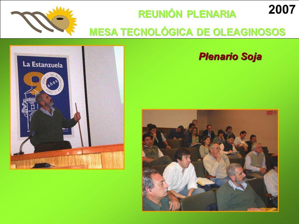 2007 Plenario Soja