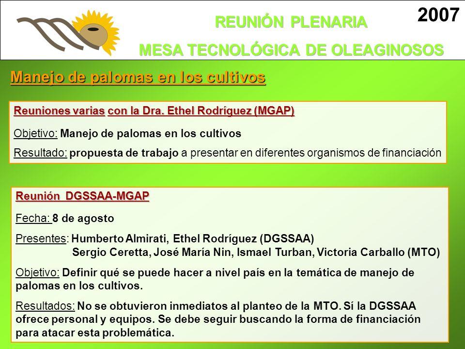 2007 Manejo de palomas en los cultivos Reunión DGSSAA-MGAP Fecha: 8 de agosto Presentes: Humberto Almirati, Ethel Rodríguez (DGSSAA) Sergio Ceretta, J