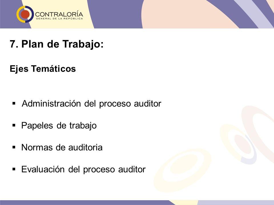 Administración del proceso auditor Papeles de trabajo Normas de auditoria Evaluación del proceso auditor 7. Plan de Trabajo: Ejes Temáticos