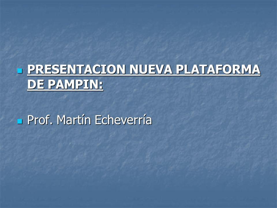 PRESENTACION NUEVA PLATAFORMA DE PAMPIN: PRESENTACION NUEVA PLATAFORMA DE PAMPIN: Prof. Martín Echeverría Prof. Martín Echeverría