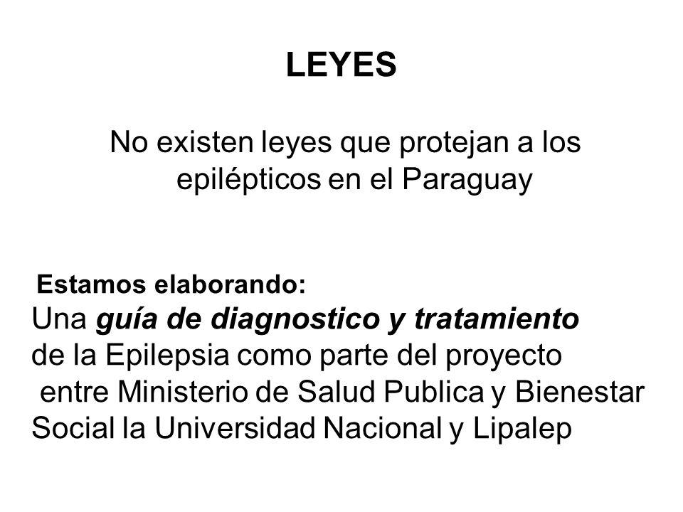 LEYES No existen leyes que protejan a los epilépticos en el Paraguay Estamos elaborando: Una guía de diagnostico y tratamiento de la Epilepsia como pa