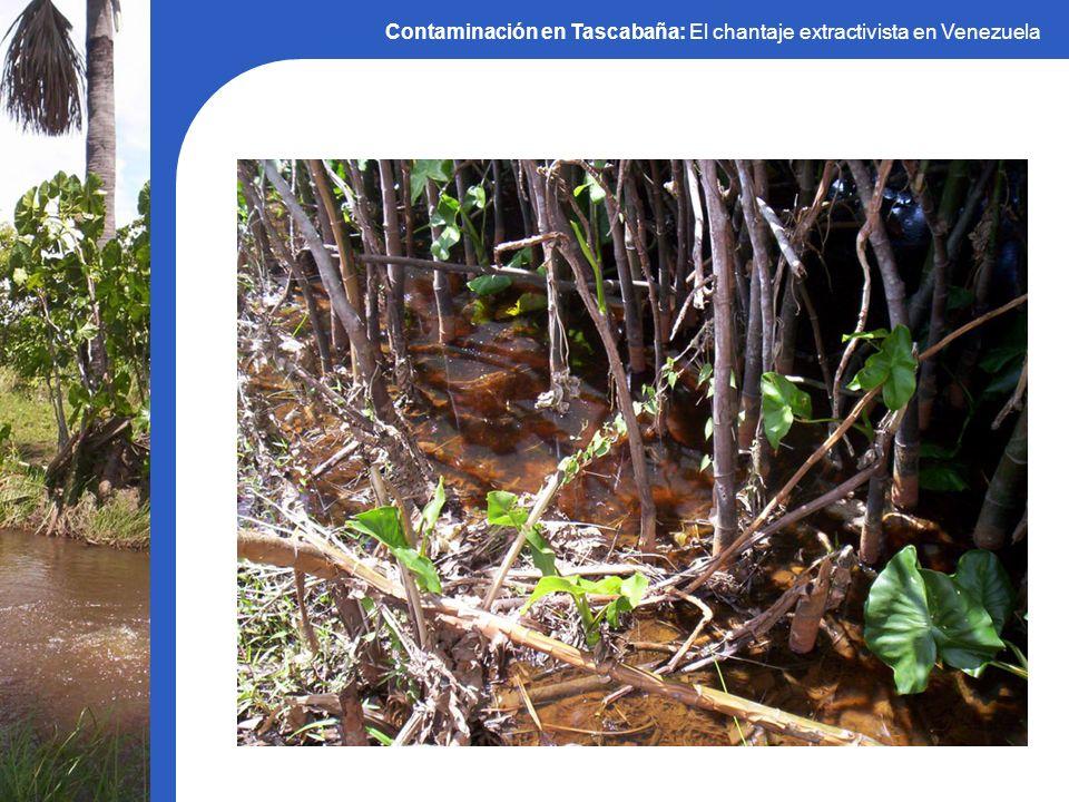 Contaminación en Tascabaña: El chantaje extractivista en Venezuela Mapa interactivo: Venezuela: Transnacionales, militarismo y resistencias ¡Muchas gracias!