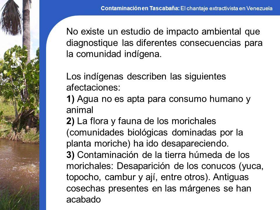 No existe un estudio de impacto ambiental que diagnostique las diferentes consecuencias para la comunidad indígena. Los indígenas describen las siguie