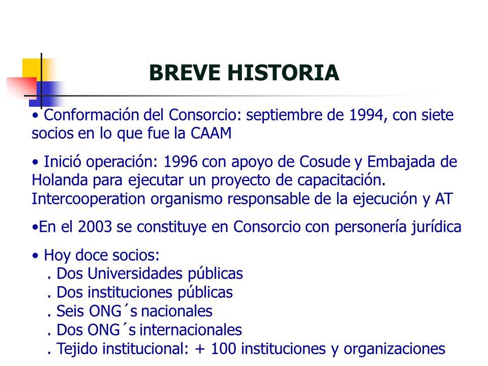 BREVE HISTORIA Conformación del Consorcio: septiembre de 1994, con siete socios en lo que fue la CAAM Inició operación: 1996 con apoyo de Cosude y Embajada de Holanda para ejecutar un proyecto de capacitación.