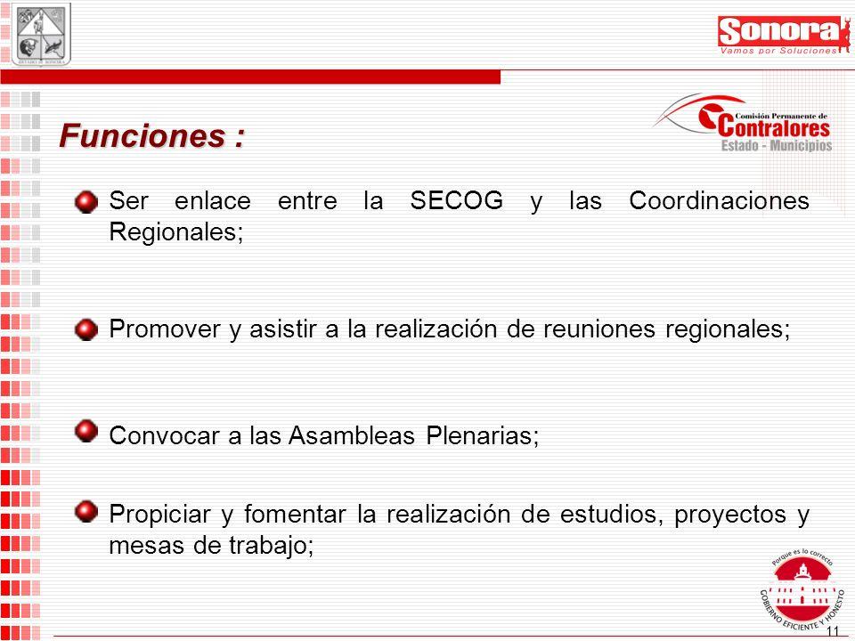 11 Funciones : Ser enlace entre la SECOG y las Coordinaciones Regionales; Promover y asistir a la realización de reuniones regionales; Convocar a las Asambleas Plenarias; Propiciar y fomentar la realización de estudios, proyectos y mesas de trabajo;