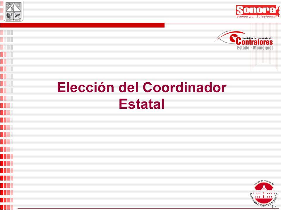 17 Elección del Coordinador Estatal