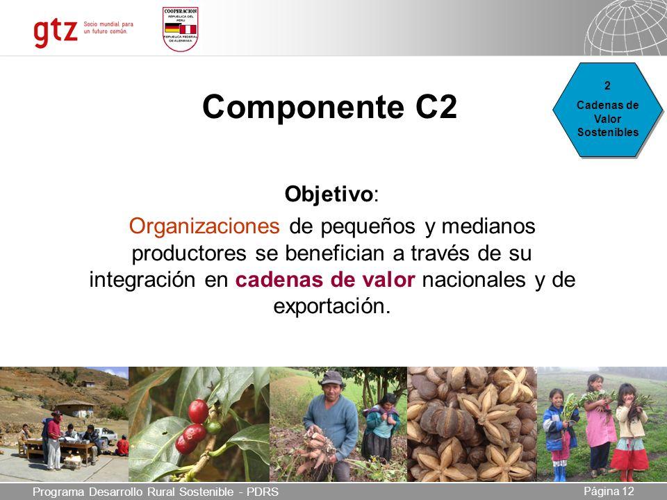 03.05.2014 Seite 12 Página 12 Componente C2 Objetivo: Organizaciones de pequeños y medianos productores se benefician a través de su integración en cadenas de valor nacionales y de exportación.